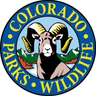 Colorado Parks and Wildlife logo drawing of bighorn sheep on mountain background